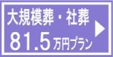 daikibo200a