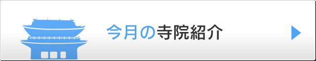 sp-jiin-introduction